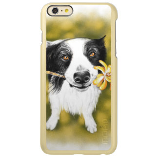 Capa Incipio Feather® Shine Para iPhone 6 Plus Cutie de border collie