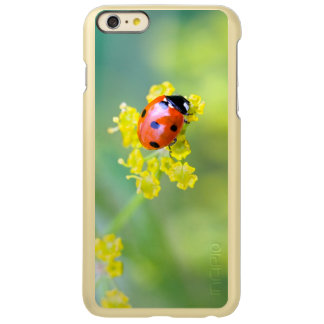 Capa Incipio Feather® Shine Para iPhone 6 Plus senhora na parte superior