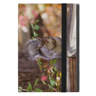 Capa iPad Mini Implorando o esquilo