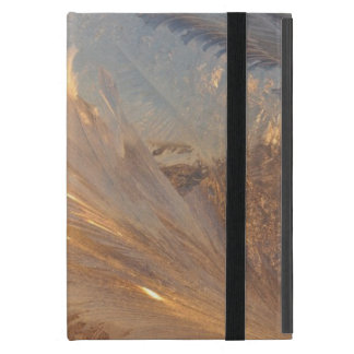 Capa iPad Mini Mini caso do iPad bonito de Frost
