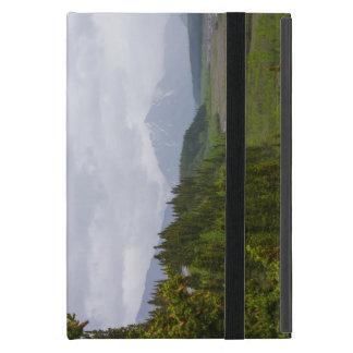 Capa iPad Mini Nebuloso em Denali