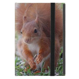 Capa iPad Mini Squirrel ~ esquilo ~ Écureuil