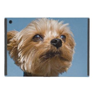 Capa iPad Mini Yorkshire terrier lindo