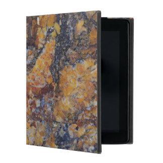 Capa iPad Textura de mármore do falso sujo de Brown