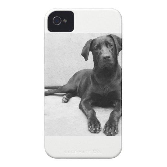 Capa iPhone 4 Labrador
