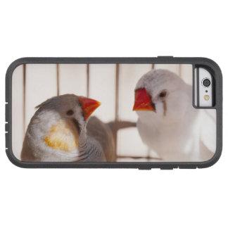 Capa iPhone 6 Tough Xtreme Dois pássaros bonitos do passarinho na gaiola