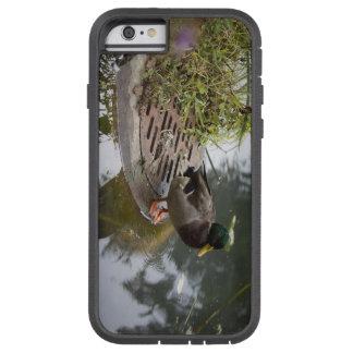 Capa iPhone 6 Tough Xtreme Pato em uma lagoa