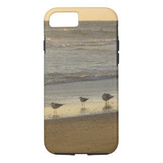 Capa iPhone 8/ 7 A andorinha-do-mar Gulls o nascer do sol do oceano
