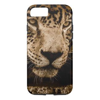 Capa iPhone 8/ 7 A cara do gato grande de animal selvagem de Jaguar