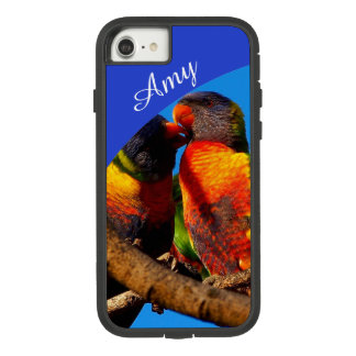 Capa iPhone 8/ 7 Arco-íris Lorikeet IPhone 8/7 de caso