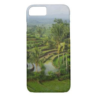Capa iPhone 8/ 7 Bali - ricefields e palmas novos do terraço