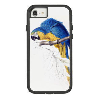 Capa iPhone 8/ 7 Caixa 8 azul do iPhone 7 do pássaro do papagaio do