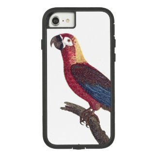Capa iPhone 8/ 7 Caixa 8 vermelha cubana do iPhone 7 do pássaro do