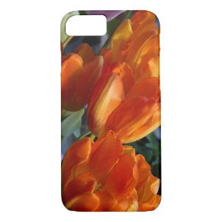 Capa iPhone 8/ 7 Caixa alaranjada da tulipa
