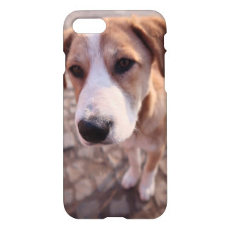 Capa iPhone 8/7 Cão disperso
