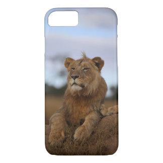 Capa iPhone 8/ 7 caso do iPhone 8 - leão
