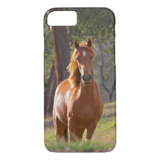 Capa iPhone 8/ 7 Cavalo nas madeiras