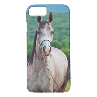 Capa iPhone 8/ 7 coleção do cavalo. árabe