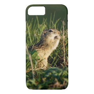 Capa iPhone 8/ 7 comer Treze-alinhado do esquilo à terra