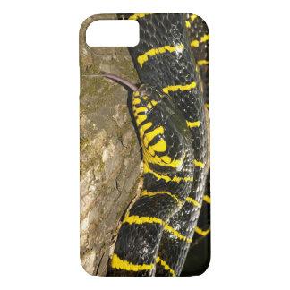 Capa iPhone 8/ 7 Dendrophila de Boiga ou cobra dos manguezais