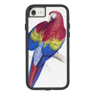 Capa iPhone 8/ 7 Do Macaw do papagaio do pássaro escarlate do caso