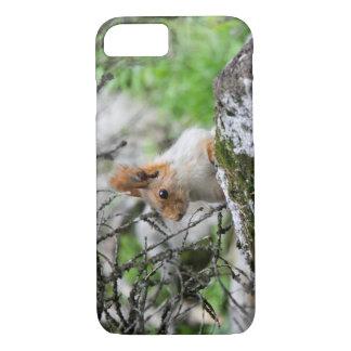 Capa iPhone 8/ 7 Encontrando esquilos em Quirguistão: Foto animal
