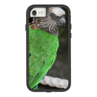 """Capa iPhone 8/ 7 """"EXEMPLO do PAPAGAIO VERDE-CLARO"""" PARA o iPHONE 7"""