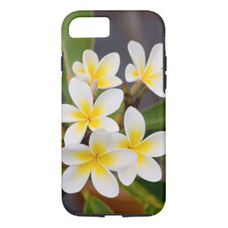 Capa iPhone 8/ 7 Flores exóticas do Frangipani