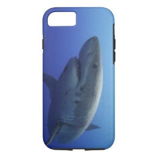 Capa iPhone 8/ 7 Grande caixa do iPhone 7 do tubarão branco