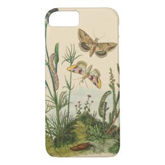 Capa iPhone 8/ 7 Insetos do jardim do vintage, borboletas, lagartas