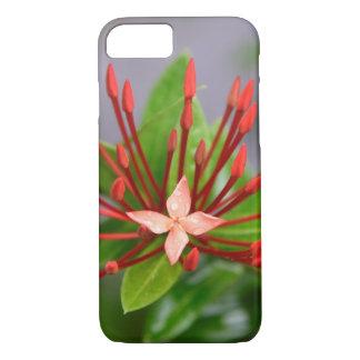 Capa iPhone 8/ 7 iPhone vermelho 8/7 de Panamá da flor, mal lá caso