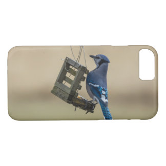 Capa iPhone 8/ 7 Jay azul de balanço