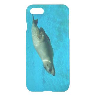 Capa iPhone 8/7 Leão de mar