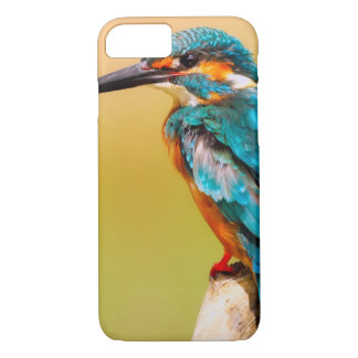 Capa iPhone 8/ 7 Martinho pescatore