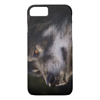 Capa iPhone 8/ 7 O lobo