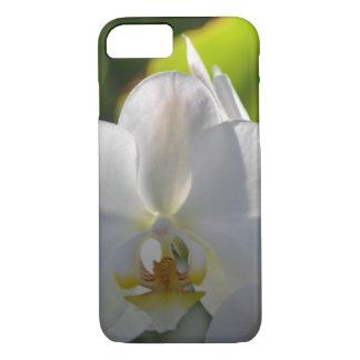 Capa iPhone 8/ 7 Orquídea