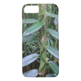 Capa iPhone 8/ 7 Orquídea de baunilha selvagem