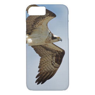 Capa iPhone 8/ 7 Osprey em vôo