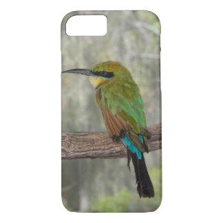 Capa iPhone 8/ 7 Pássaro do abelha-comedor do arco-íris, Austrália