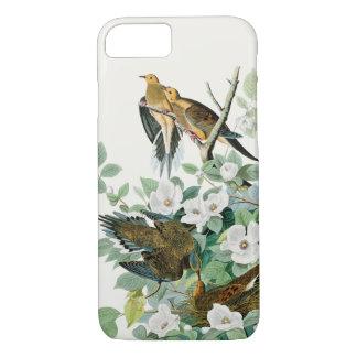 Capa iPhone 8/ 7 Pomba da tartaruga de Carolina, pássaros de