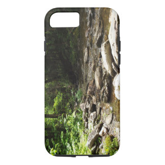 Capa iPhone 8/ 7 Rio na madeira
