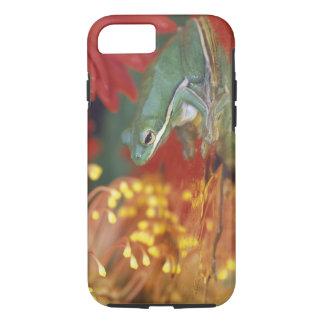 Capa iPhone 8/ 7 Sapo e reflexões entre flores. Crédito como:
