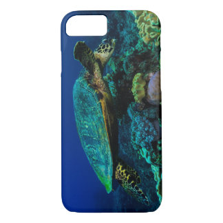 Capa iPhone 8/ 7 Tartaruga de mar de Hawksbill no grande recife de