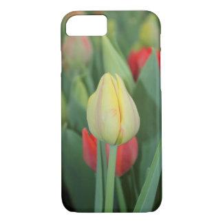 Capa iPhone 8/ 7 Uma caixa da foto da tulipa para iPhone.