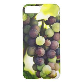 Capa iPhone 8/ 7 Uvas maravilhosas da videira, queda Sun do outono