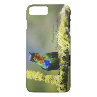 Capa iPhone 8 Plus/7 Plus colibri Impetuoso-throated