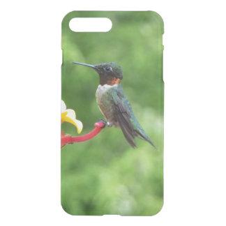 Capa iPhone 8 Plus/7 Plus Fotografia Rubi-Throated do pássaro do colibri