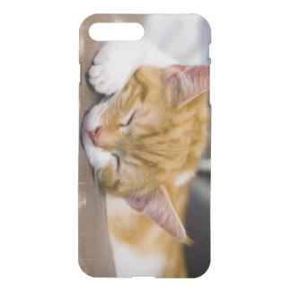 Capa iPhone 8 Plus/7 Plus Gatinho bonito