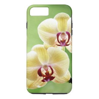 Capa iPhone 8 Plus/7 Plus Orquídea amarela e cor-de-rosa
