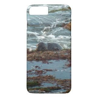 Capa iPhone 8 Plus/7 Plus Selo de porto do Lit do por do sol mim em San